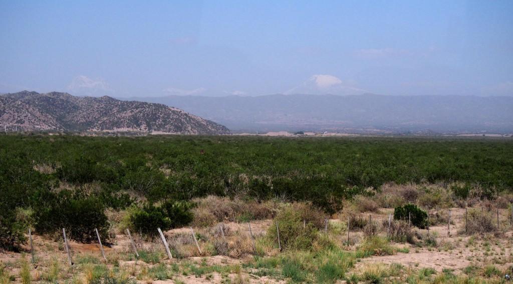 Аргентинская пампа и горы