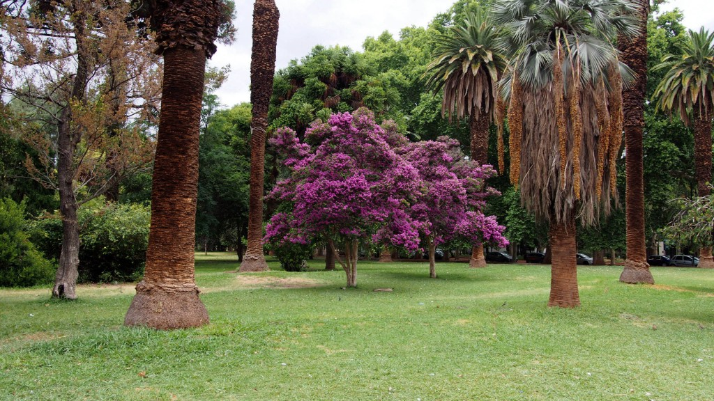 Парк в Мендосе.
