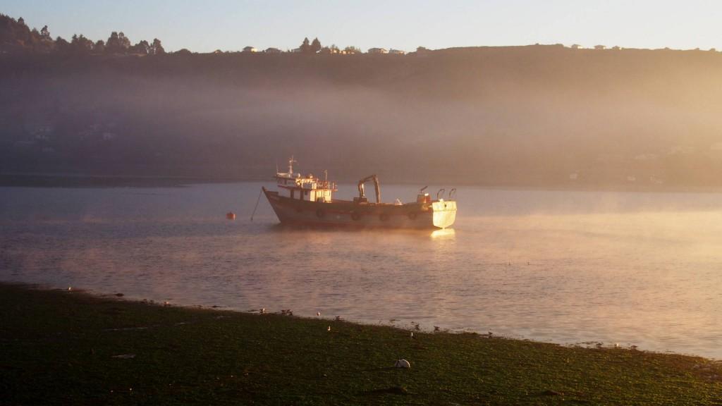 Восход, подсветка тумана