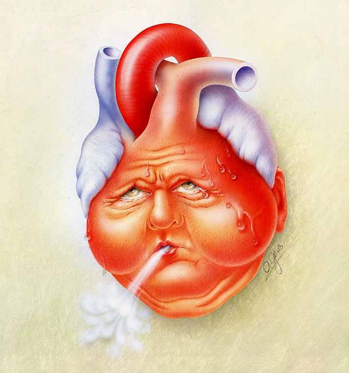 О связи между сердцем и эмоциями известно еще с античных времен.