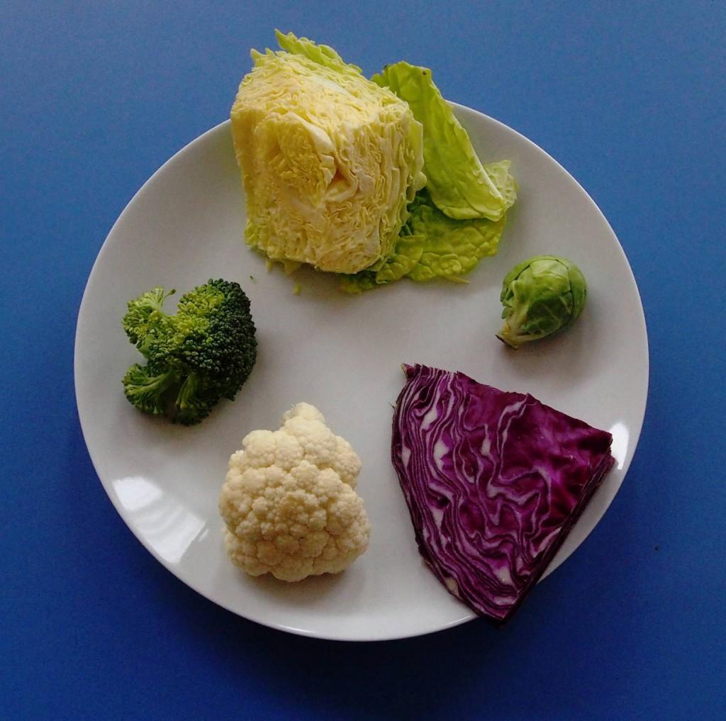 Существуют множество видов  капусты. Савойская капуста (похожа на белокочанную, но более нежная), брюссельская, краснокочанная, цветная, брокколи.